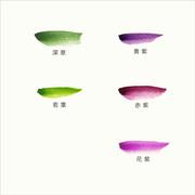 彩雲堂製鉄鉢の色見本(深草・若葉・青紫・赤紫・花紫)