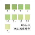 黄口若葉緑青(日本画用・新岩絵具)の色見本