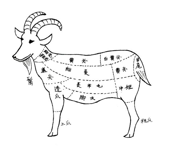筆の作り方羊毛の部類